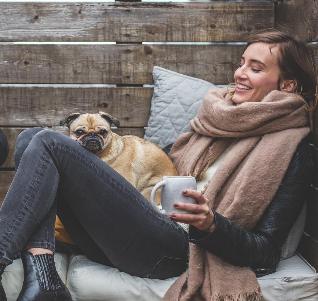 Sofa_Hund